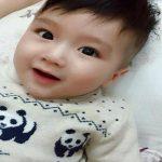 Giải mã ý nghĩa tên Hoàng Bách được chọn đặt cho Baby