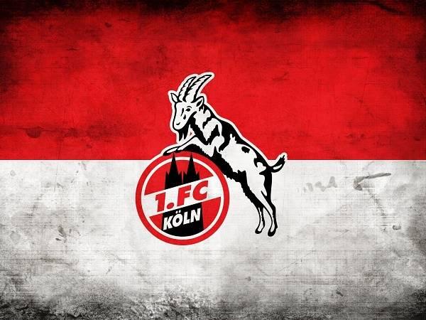 Câu lạc bộ bóng đá Koln – Lịch sử, thành tích của CLB